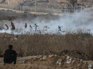 Palestine : 12 personnes tuées et 630 blessées en août