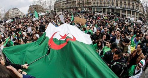 Elle organise un rassemblement vendredi prochain à Nice : La diaspora algérienne en France se mobilise