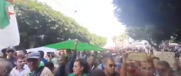 Vidéo – 35ème mardi de protestation : «libérez les détenus, ils n'ont pas vendu de cocaïne»