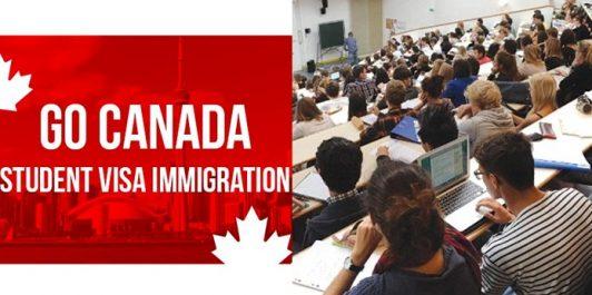 Le nombre d'étudiants algériens au Canada a doublé en deux ans !