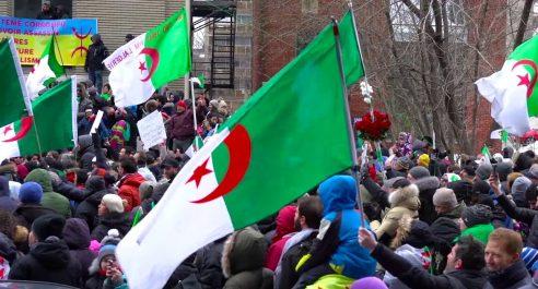 Marche des algériens à Montréal : «Il n'y aura pas d'élection contre la volonté populaire»
