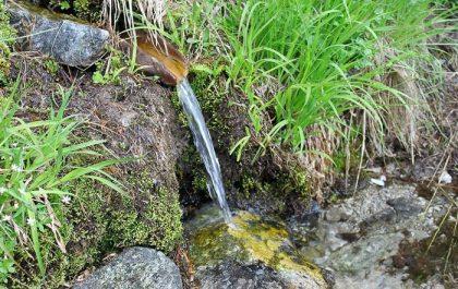 Tipasa : Éradication des sources d'eau suspectes