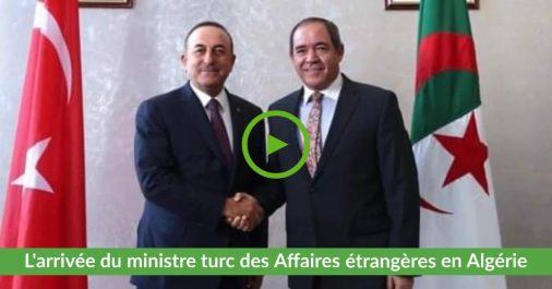 Vidéo | L'arrivée du ministre turc des Affaires étrangères en Algérie