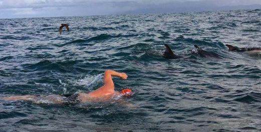 Il tentait de rejoindre l'Australie à la nage, un Algérien secouru par des pêcheurs