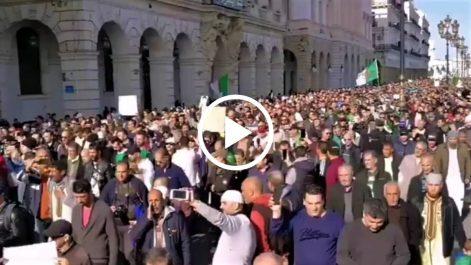 48e vendredi à Alger | L'avenue Zighoud Youcef noire de monde