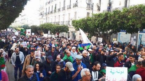 Des chercheurs algériens en Amérique expriment leur soutien «indéfectibles» au Hirak